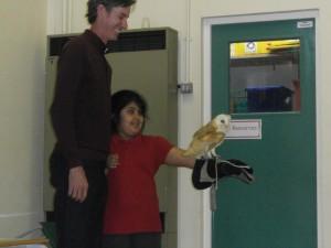 Owl man visit